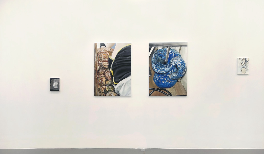 https://mireilleblanc.com/files/gimgs/th-6_Mireille-Blanc-Kinder-coquillages-galerie-Anne-Sarah-Benichou-2020.jpg