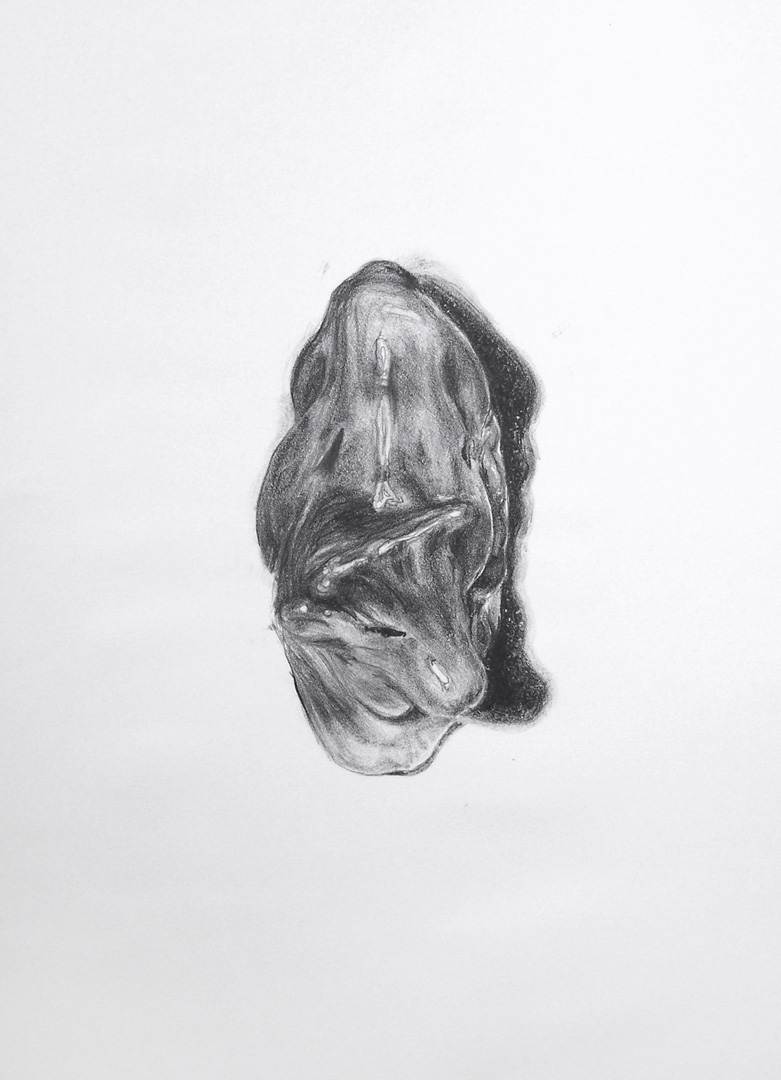 Mireille Blanc, Relique, 2008, 50 x 60 cm, Lithography, Edition of 7