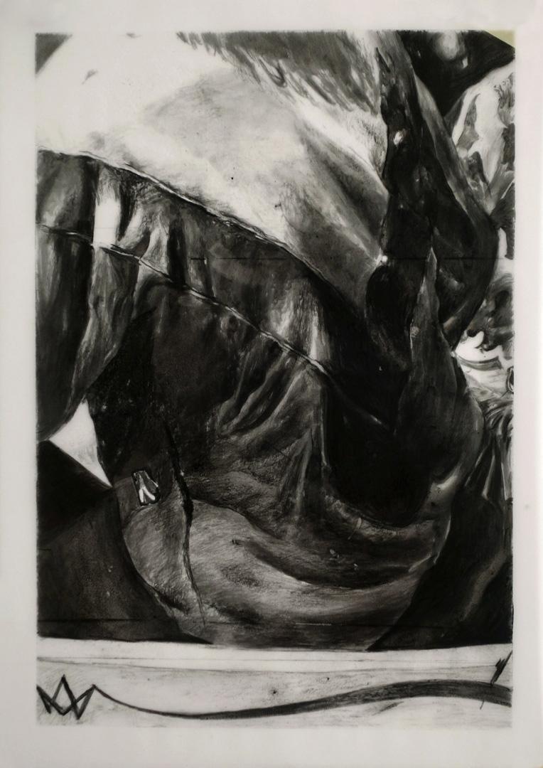 Mireille Blanc, Sweat, 2014